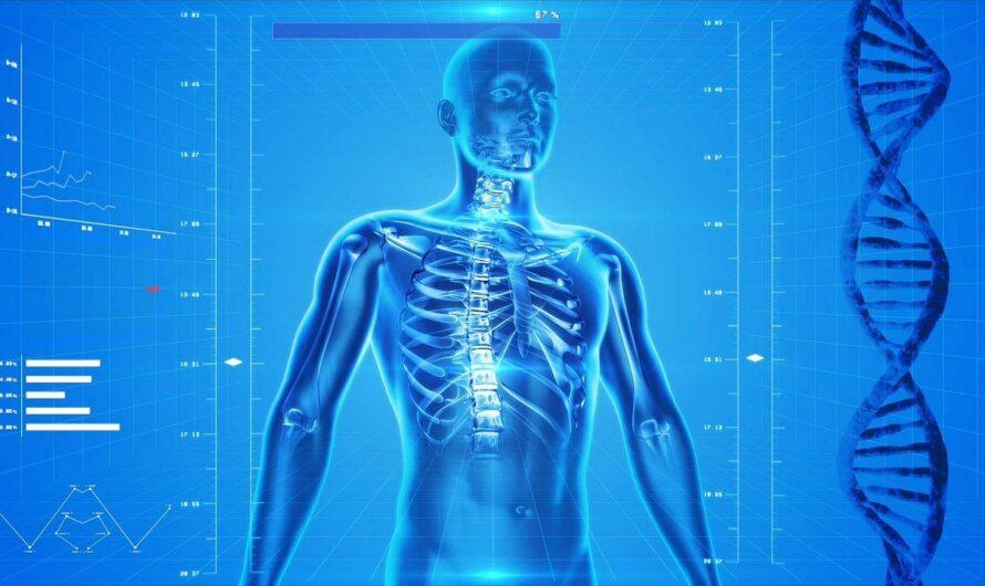 ¿Es saludable la kinesiología?