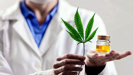 aplicaciones terapeuticas del cannabis